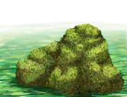 苔の生した岩
