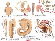 筋肉の描き方メイキング(ハム腕編)