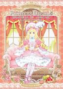 PrincessDream5フライヤー