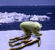 真夏の北極の淫夢