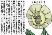 【キンポウゲの反乱】