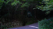 森のミクダヨー