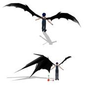 翼モデルその2
