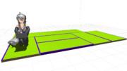 MMD用の畳を作って自分の部屋と同じに敷いてみた(仮)
