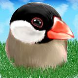 文鳥(修正版)