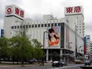 【東急ストア北見店】網走かにキャンペーン広告【ぎょれん】