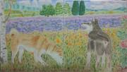 柴犬とラベンダー