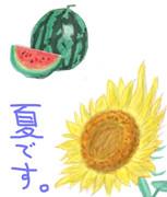 西瓜とひまわり