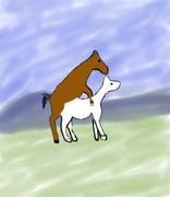 白馬に乗った馬の王子様がきました。