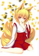 秋の狐巫女!!
