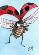 天道虫「飛行中」