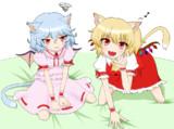スカーレット姉妹(猫)