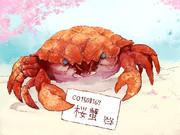 桜蟹さんへ
