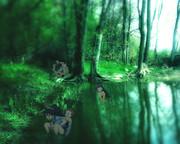 森の中で遊ぶGNHくん