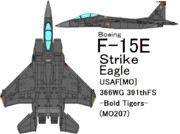 F-15E Strike Eagle -Bold Tigers-
