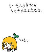 にょきリン