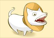 サラマンダー(犬)