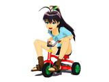 三輪車(使用例)