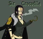 クロコダイル 新世界編 女性