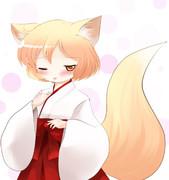 狐巫女琴浦さん