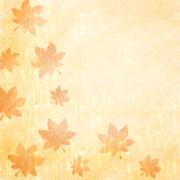 【フリー素材】秋紅葉