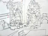 静寂の観葉植物