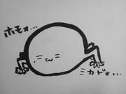 ┌(┌ ^o^)┐<ホモォ... ①【帝法師】