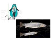 mmd川魚