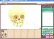 子供の頭蓋骨