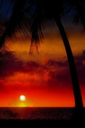 The distant sunset / 想い出