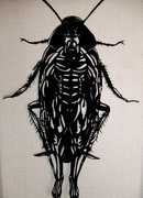 ゴキブリ人間