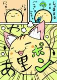 今日は「猫の日」なので・・・