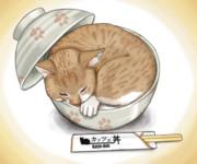 カッツェ丼
