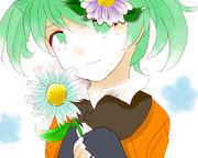 Fei・rune´s flower
