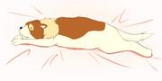 なんだかとても眠い時用、抱き枕