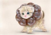 ポンデニャイオン:ショコラ