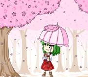 桜ヒラヒラ