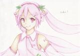 ボーカロイドの「桜ミク」描いてみた