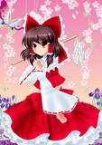 桜と杜若と巫女