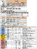 ブレカナ卓、PCデータ「ヨルダ(PL妖夢)」