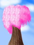 【GIF】ある丘の上にある桜の下で
