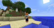 砂浜と野獣