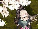 [IA] Sakura -lookdown- [4k2k]