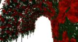 薔薇アーチ Ver1.0