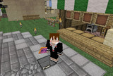 Minecraft 小狼のスキンとお札