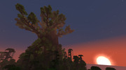 製作中の世界樹 その2