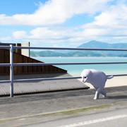 猫の日常的な散歩風景