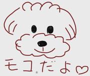 愛犬モコちゃんを描いてみた