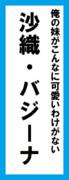 オールスター感謝祭の名前札(沙織・バジーナver.)