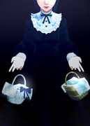 【MMO】 アンの籠